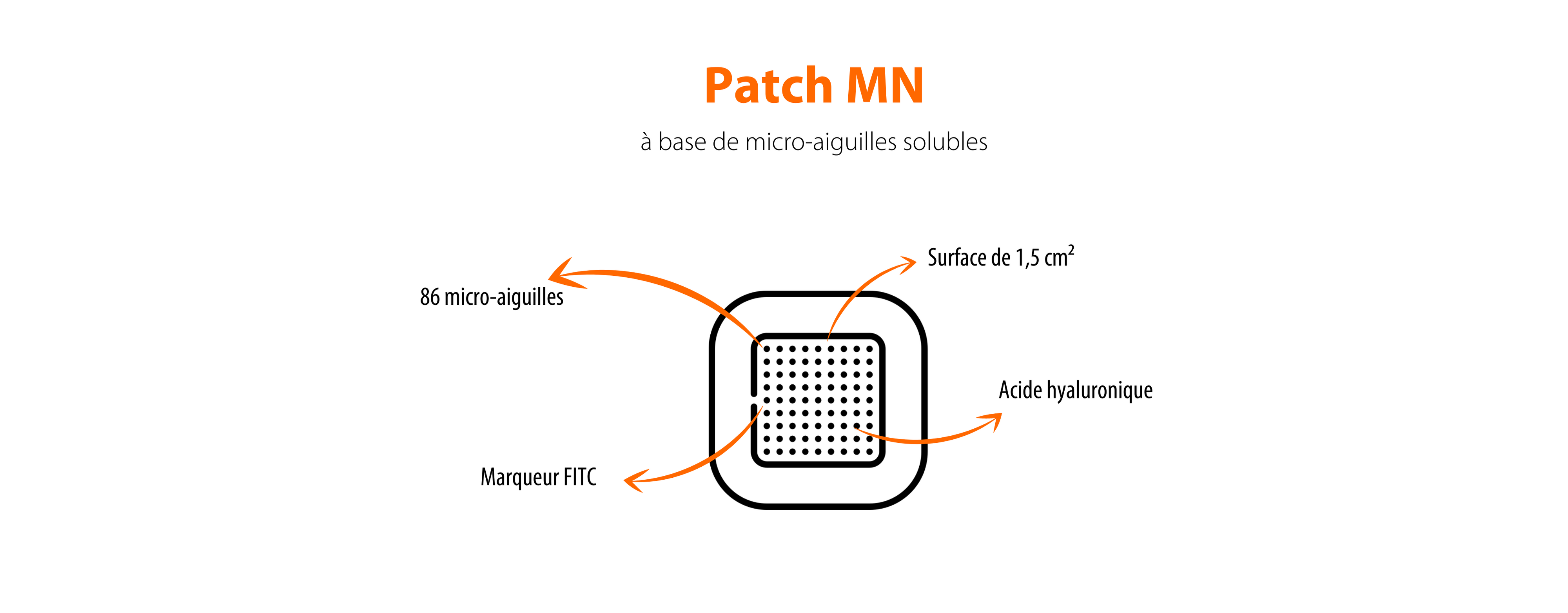 Patch MN